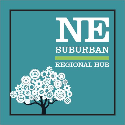 Hub-SubNE